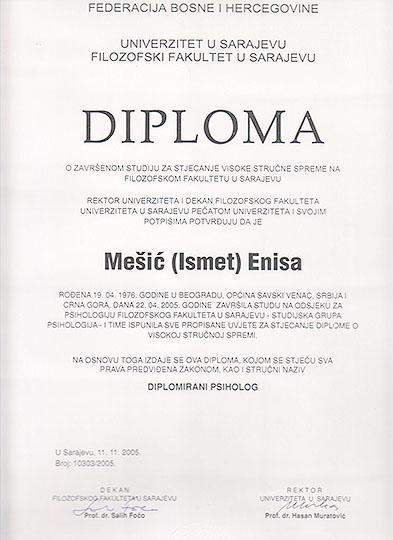 bosnia 1908 thesis